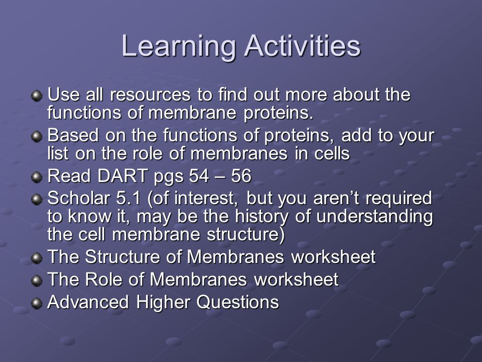 Learning Activities Use all resources to find out more about the functions of membrane proteins. Based on the functions of proteins, add to your list