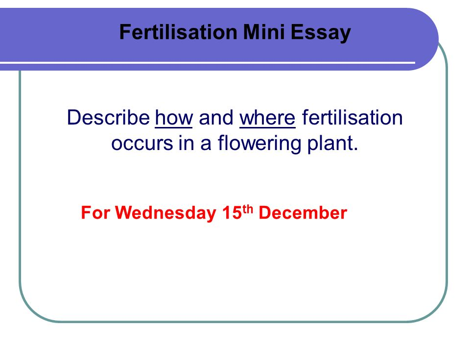 Fertilisation Mini Essay Describe how and where fertilisation occurs in a flowering plant. For Wednesday 15 th December