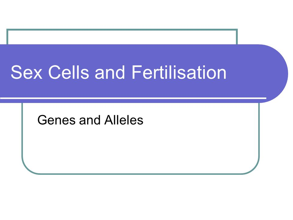Sex Cells and Fertilisation Genes and Alleles