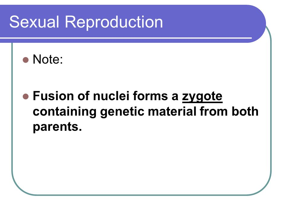 Sexual Reproduction Note: Fusion of nuclei forms a zygote containing genetic material from both parents.