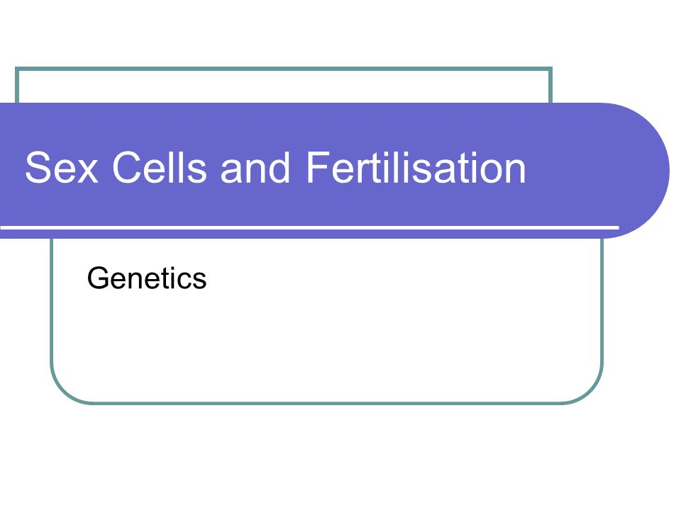 Sex Cells and Fertilisation Genetics