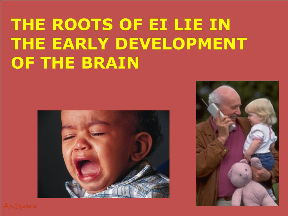 Art Systems THE ROOTS OF EI LIE IN THE EARLY DEVELOPMENT OF THE BRAIN