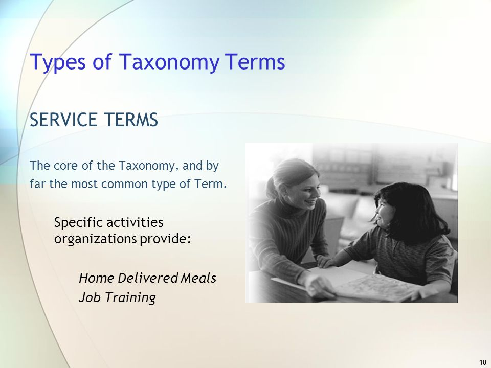 18 Types of Taxonomy Terms SERVICE TERMS The core of the Taxonomy, and by far the most common type of Term.