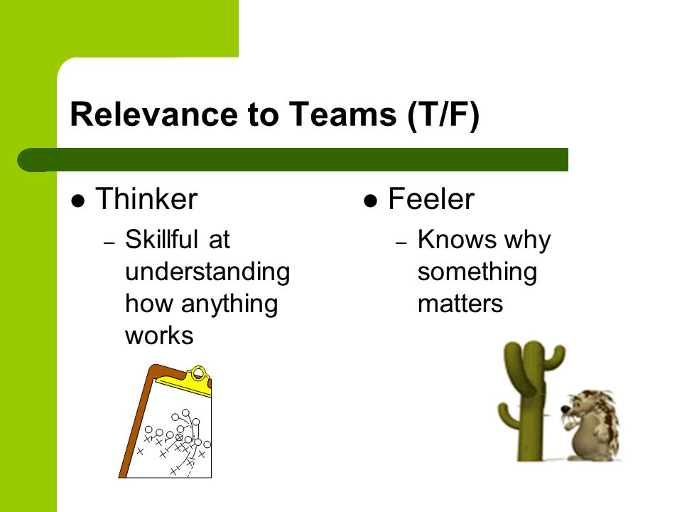 Relevance to Teams (T/F) Thinker – Skillful at understanding how anything works Feeler – Knows why something matters