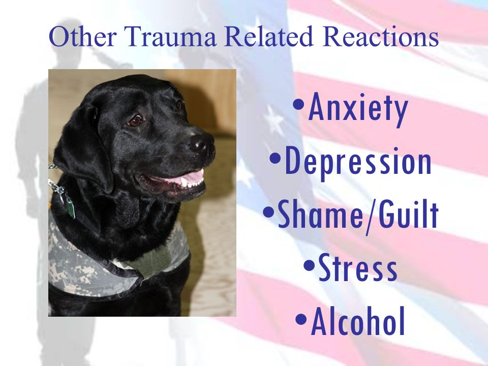 Other Trauma Related Reactions Anxiety Depression Shame/Guilt Stress Alcohol