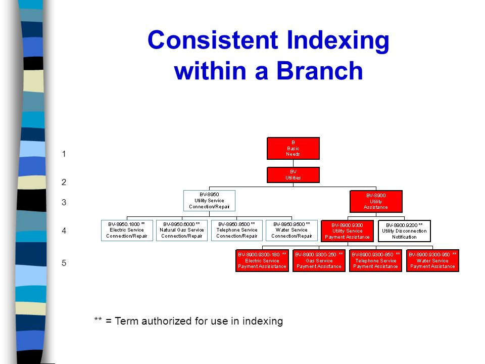 Consistent Indexing within a Branch ** = Term authorized for use in indexing 1 2 3 4 5