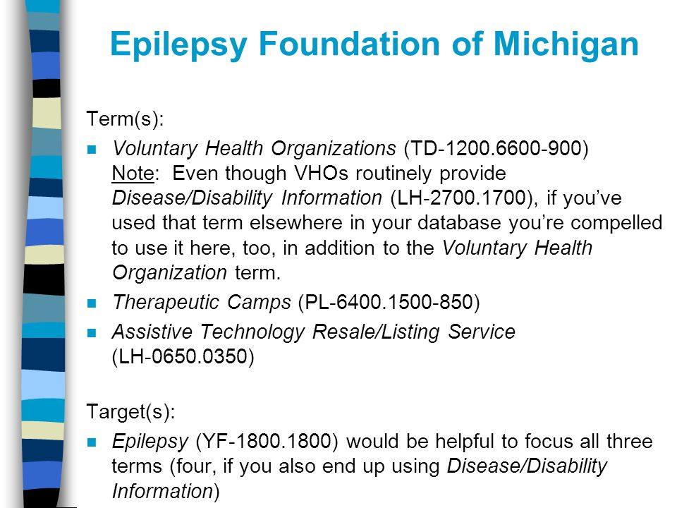 Epilepsy Foundation of Michigan Term(s): n Voluntary Health Organizations (TD-1200.6600-900) Note: Even though VHOs routinely provide Disease/Disability Information (LH-2700.1700), if youve used that term elsewhere in your database youre compelled to use it here, too, in addition to the Voluntary Health Organization term.