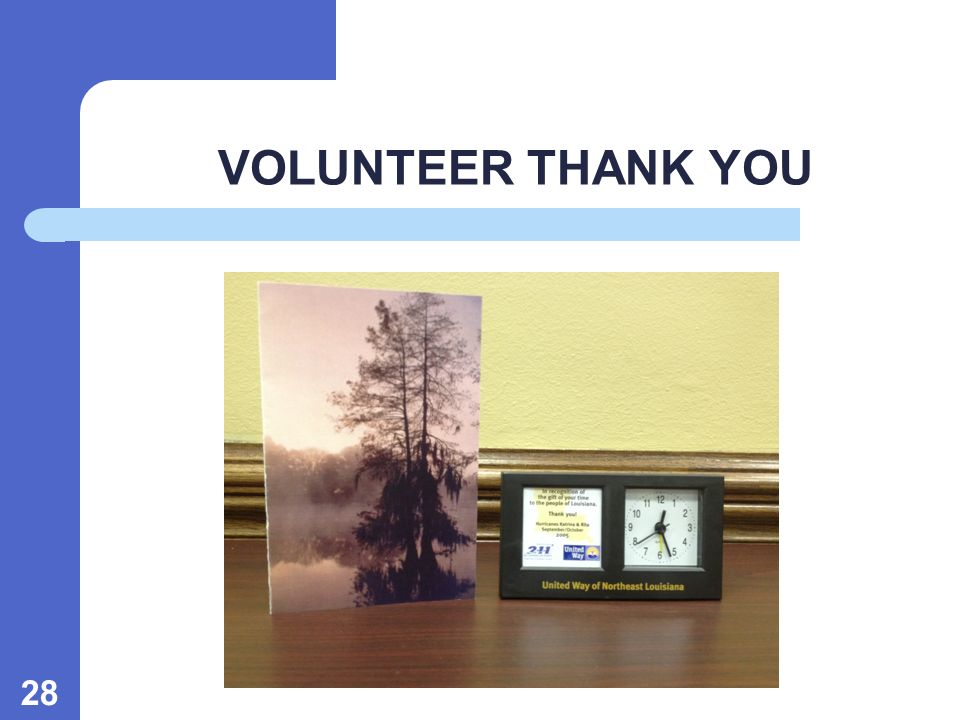 28 VOLUNTEER THANK YOU