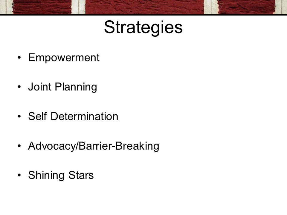 Strategies Empowerment Joint Planning Self Determination Advocacy/Barrier-Breaking Shining Stars