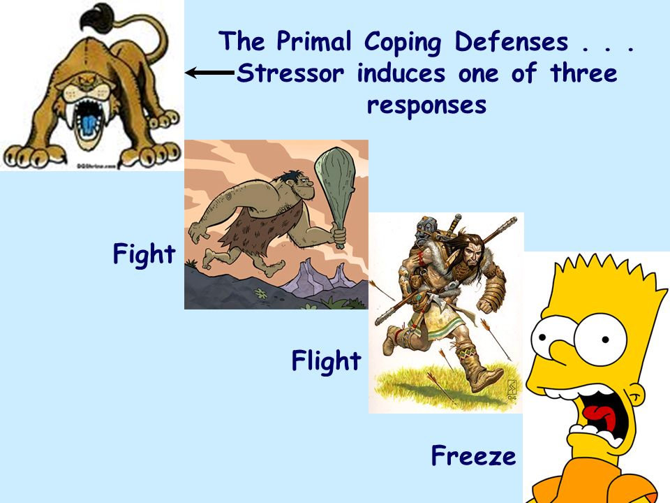 The Primal Coping Defenses... Stressor induces one of three responses Fight Flight Freeze