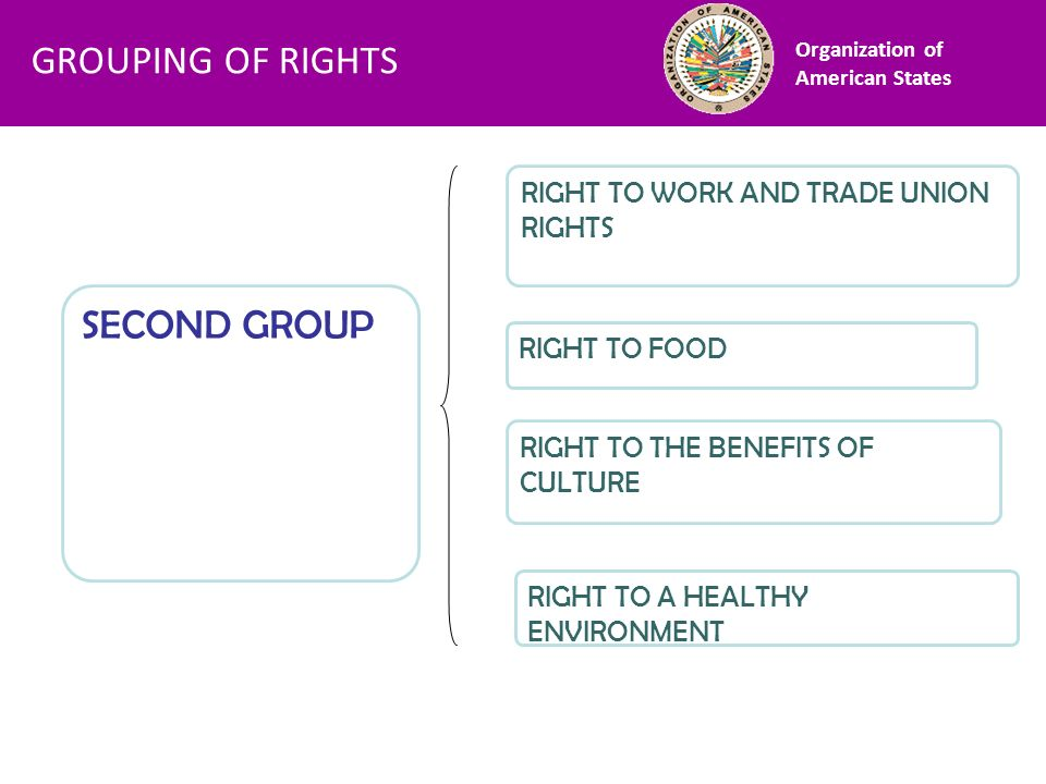 Financiamiento SECOND GROUP RIGHT TO WORK AND TRADE UNION RIGHTS RIGHT TO FOOD RIGHT TO THE BENEFITS OF CULTURE RIGHT TO A HEALTHY ENVIRONMENT Organiz