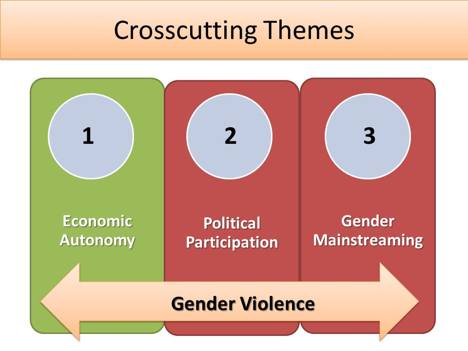Crosscutting Themes Economic Autonomy Political Participation Gender Mainstreaming Gender Violence 123
