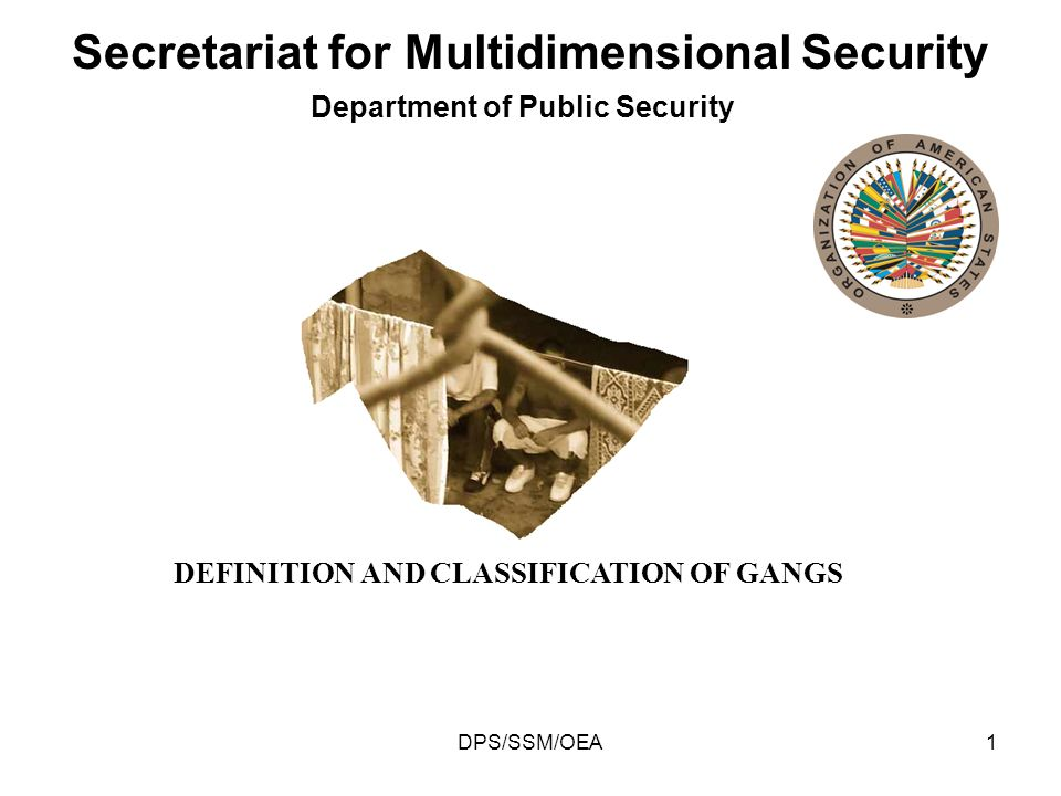 DPS/SSM/OEA1 Department of Public Security Secretariat for Multidimensional Security DEFINITION AND CLASSIFICATION OF GANGS