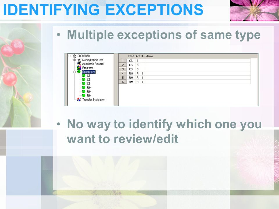 IDENTIFYING EXCEPTIONS Multiple exceptions of same type No way to identify which one you want to review/edit