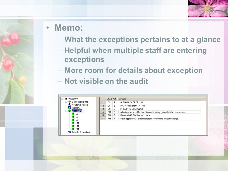 Memo: –What the exceptions pertains to at a glance –Helpful when multiple staff are entering exceptions –More room for details about exception –Not visible on the audit