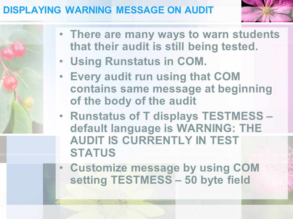 DISPLAYING WARNING MESSAGE ON AUDIT There are many ways to warn students that their audit is still being tested.