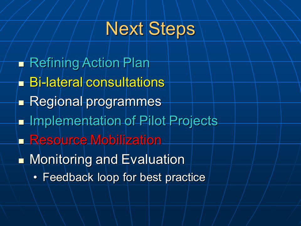 Next Steps Refining Action Plan Refining Action Plan Bi-lateral consultations Bi-lateral consultations Regional programmes Regional programmes Implementation of Pilot Projects Implementation of Pilot Projects Resource Mobilization Resource Mobilization Monitoring and Evaluation Monitoring and Evaluation Feedback loop for best practiceFeedback loop for best practice