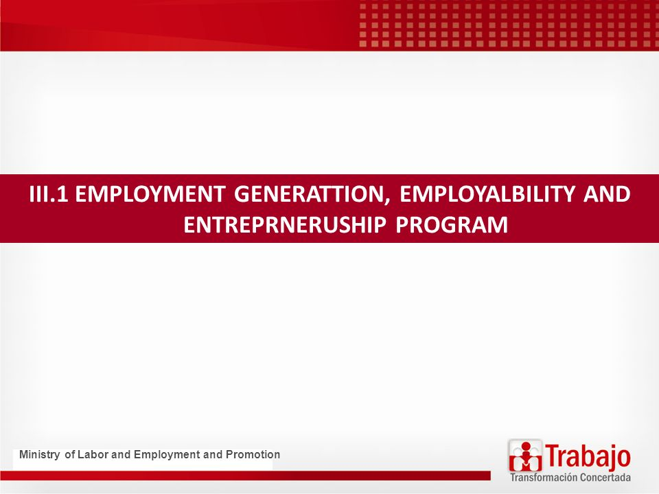 III.1 EMPLOYMENT GENERATTION, EMPLOYALBILITY AND ENTREPRNERUSHIP PROGRAM Ministry of Labor and Employment and Promotion
