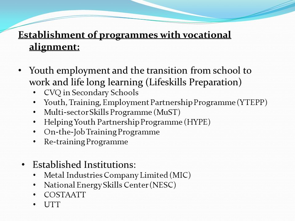 Establishment of programmes with vocational alignment: Youth employment and the transition from school to work and life long learning (Lifeskills Preparation) CVQ in Secondary Schools Youth, Training, Employment Partnership Programme (YTEPP) Multi-sector Skills Programme (MuST) Helping Youth Partnership Programme (HYPE) On-the-Job Training Programme Re-training Programme Established Institutions: Metal Industries Company Limited (MIC) National Energy Skills Center (NESC) COSTAATT UTT
