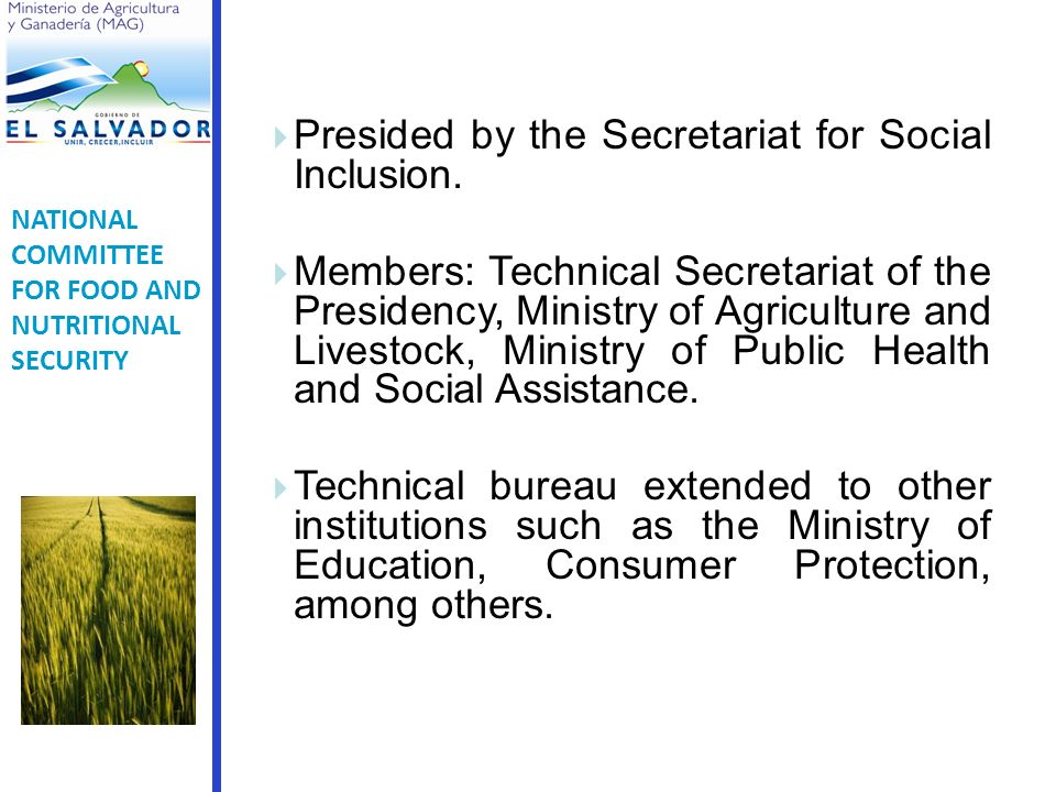Presided by the Secretariat for Social Inclusion.