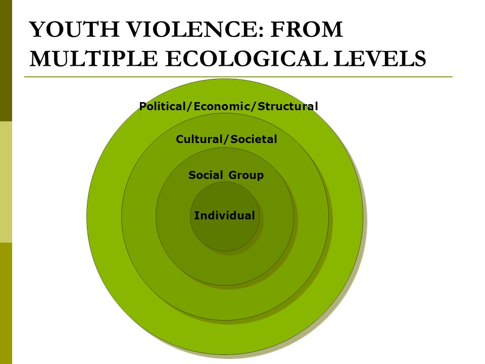 CONTRIBUTING FACTORS, WORKING TOGETHER In a social ecology that is an outgrowth of poverty and social exclusion… Youth often do not believe there is a place for them outside of the bounded social ecology in which they live.