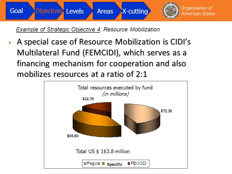 A special case of Resource Mobilization is CIDIs Multilateral Fund (FEMCIDI), which serves as a financing mechanism for cooperation and also mobilizes