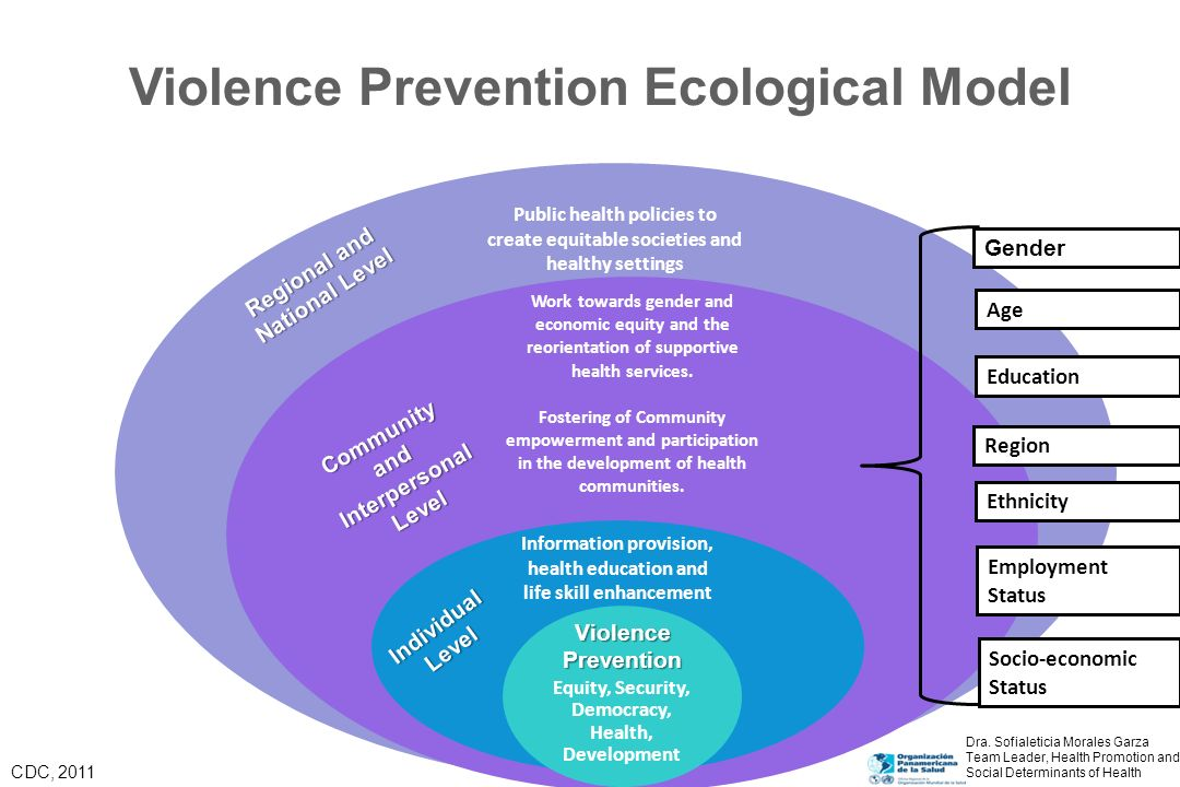 The Problem: Typology of Violence Self-directed: –Suicidal behavior –Self-abuse Interpersonal Violence –Family and intimate partner violence –Community violence Collective Violence –Social violence –Political violence –Economic violence WHO.