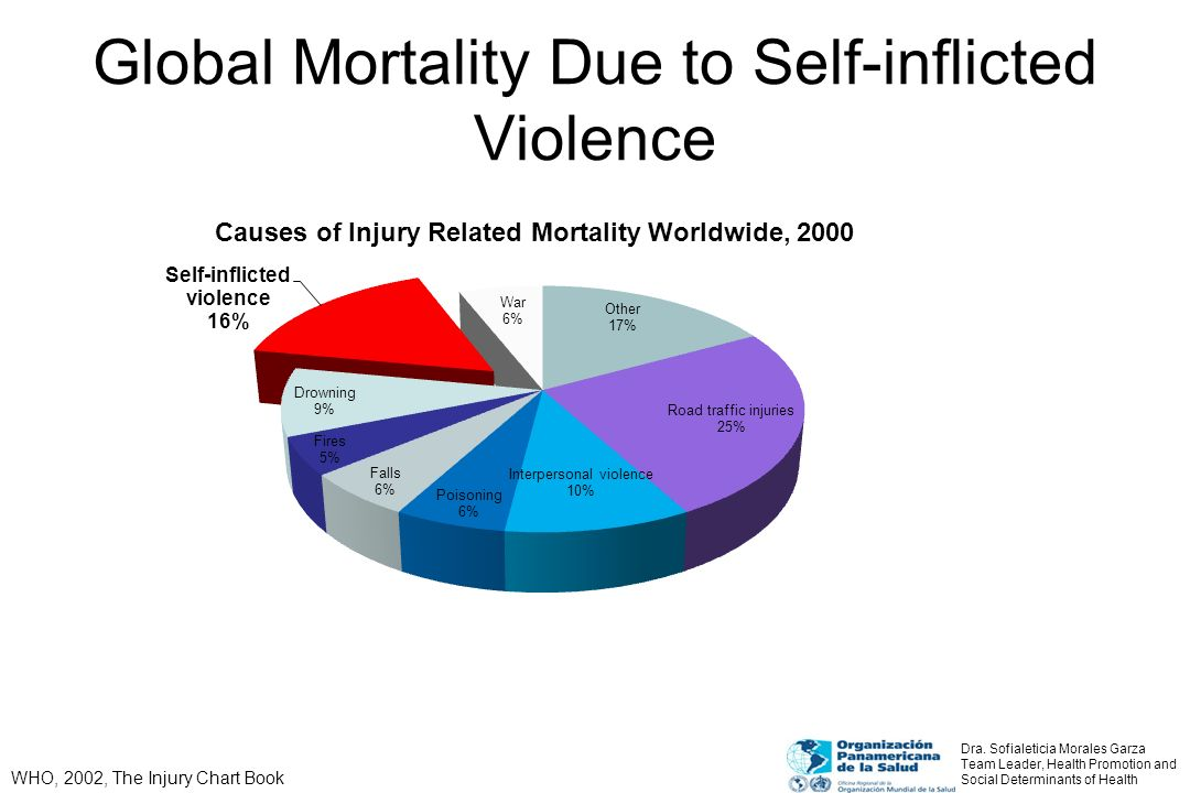 Global Mortality Due to Interpersonal Violence WHO, 2002, The Injury Chart Book Interpersonal violence makes up a significant portion of global mortality.