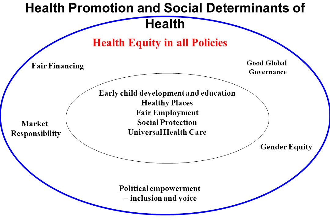 Mission in Action PAHO is strongly committed to putting equity firmly on the agenda Equity and the Social Determinants of Health are key priorities in Health Agenda for the Americas 2008-2017 Addressing inequities through the approach of The social determinants of health is one of the objectives in PAHOs Strategic Plan