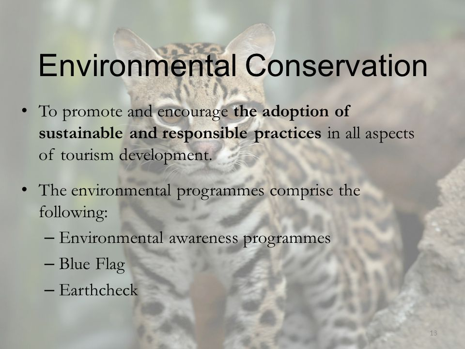 Environmental Conservation To promote and encourage the adoption of sustainable and responsible practices in all aspects of tourism development. The e