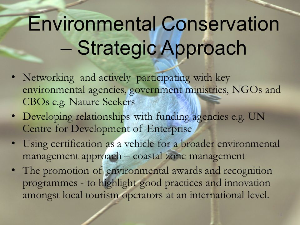 Environmental Conservation – Strategic Approach Networking and actively participating with key environmental agencies, government ministries, NGOs and CBOs e.g.