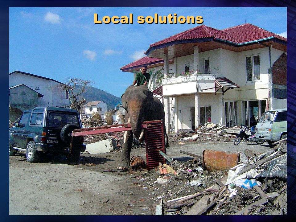 Pan American Health Organization Local solutions
