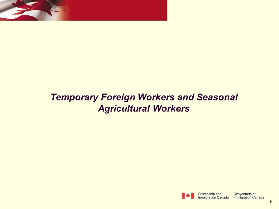 6 Temporary Foreign Workers and Seasonal Agricultural Workers
