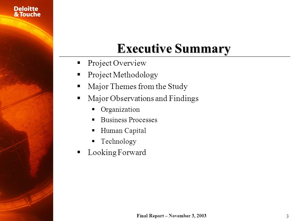 Final Report – November 3, 2003 Executive Summary Project Overview Project Methodology Major Themes from the Study Major Observations and Findings Org
