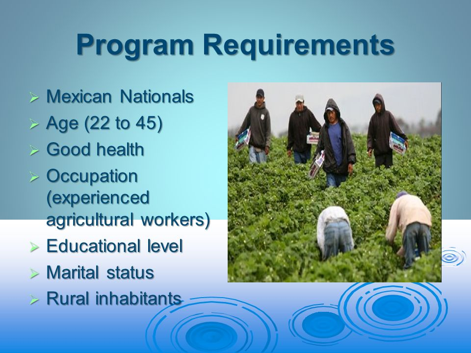 Program Requirements Mexican Nationals Mexican Nationals Age (22 to 45) Age (22 to 45) Good health Good health Occupation (experienced agricultural workers) Occupation (experienced agricultural workers) Educational level Educational level Marital status Marital status Rural inhabitants Rural inhabitants