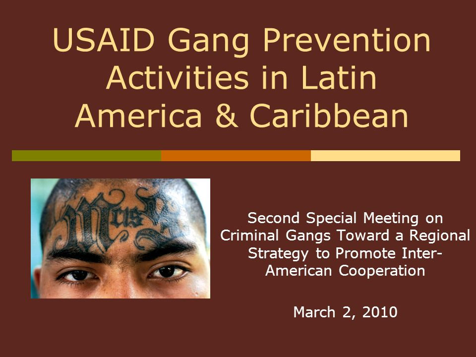 Second Special Meeting on Criminal Gangs Toward a Regional Strategy to Promote Inter- American Cooperation March 2, 2010 USAID Gang Prevention Activit