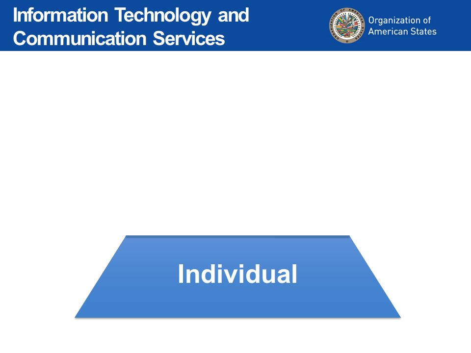 Individual Departmental Organizational Information Technology and Communication Services