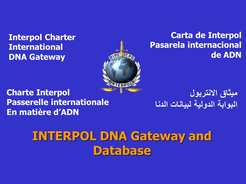 INTERPOL DNA Gateway and Database Interpol Charter International DNA Gateway Carta de Interpol Pasarela internacional de ADN Charte Interpol Passerelle internationale En matière dADN ميثاق الانتربول البوابة الدولية لبيانات الدنا