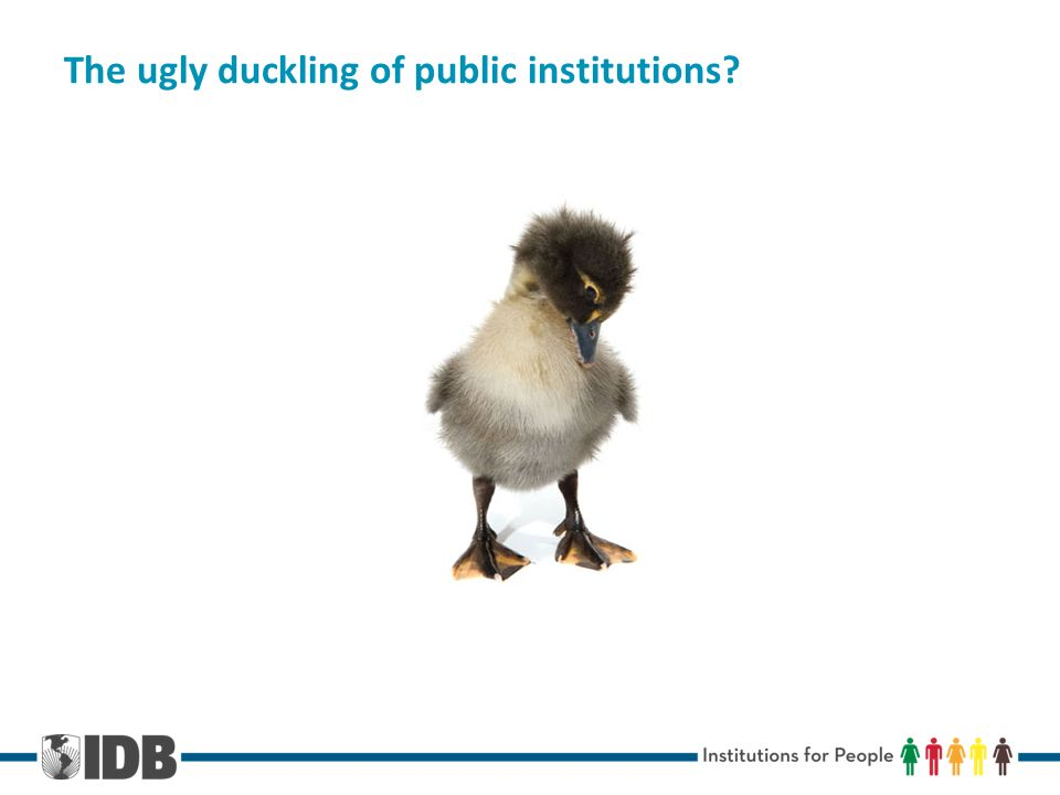 The ugly duckling of public institutions