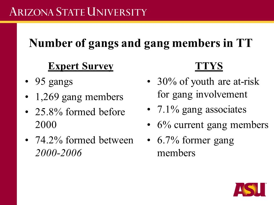 Number of gangs and gang members in TT Expert Survey 95 gangs 1,269 gang members 25.8% formed before 2000 74.2% formed between 2000-2006 TTYS 30% of youth are at-risk for gang involvement 7.1% gang associates 6% current gang members 6.7% former gang members