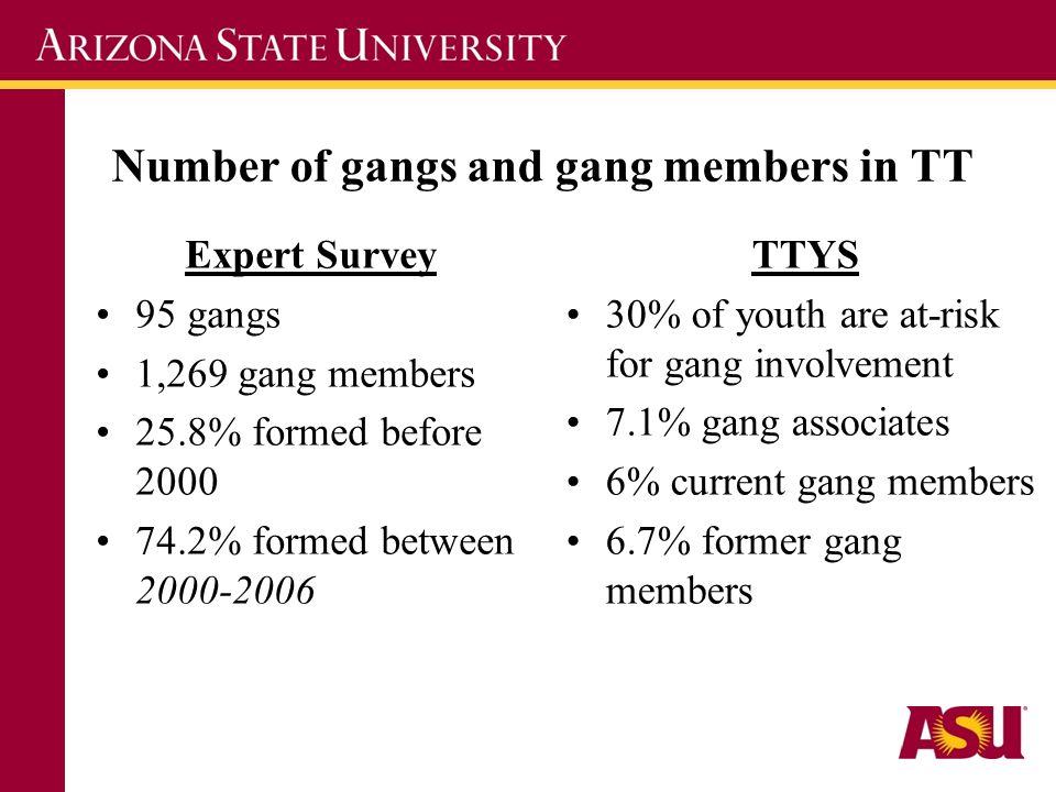 Number of gangs and gang members in TT Expert Survey 95 gangs 1,269 gang members 25.8% formed before 2000 74.2% formed between 2000-2006 TTYS 30% of y