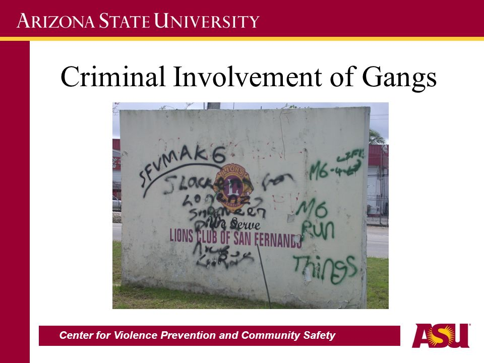 Criminal Involvement of Gangs Center for Violence Prevention and Community Safety