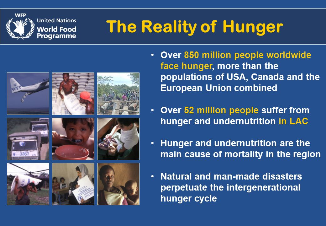 Alejandro.chicheri@wfp.org /2007 The Reality of Hunger Over 850 million people worldwide face hunger, more than the populations of USA, Canada and the