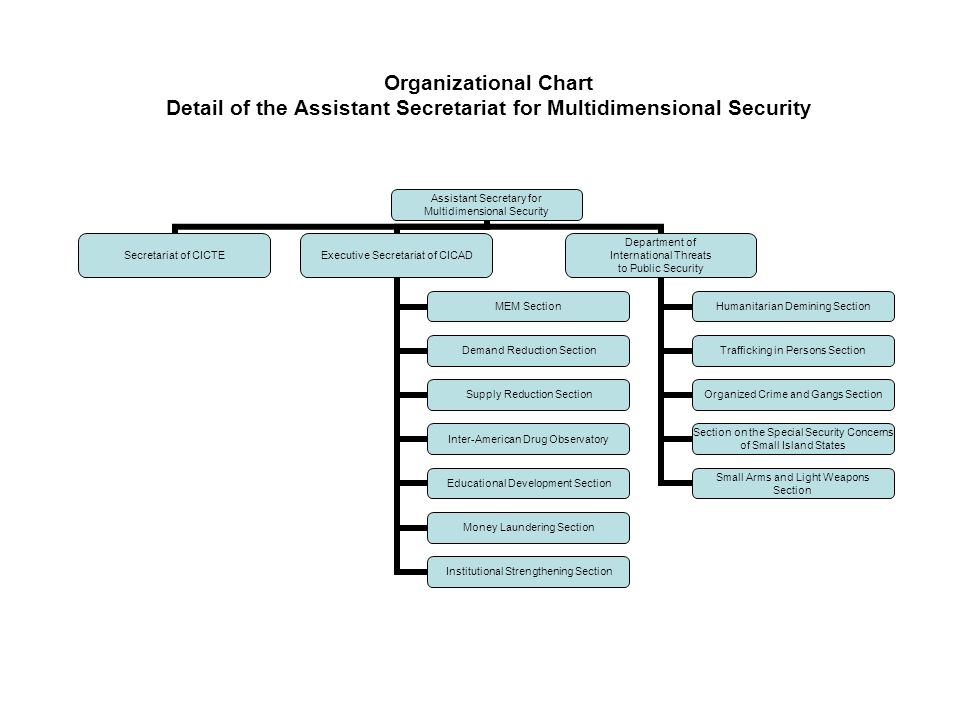 Organizational Chart Detail of the Assistant Secretariat for Multidimensional Security Assistant Secretary for Multidimensional Security Secretariat of CICTE Executive Secretariat of CICAD MEM Section Demand Reduction Section Supply Reduction Section Inter-American Drug Observatory Educational Development Section Money Laundering Section Institutional Strengthening Section Department of International Threats to Public Security Humanitarian Demining Section Trafficking in Persons Section Organized Crime and Gangs Section Section on the Special Security Concerns of Small Island States Small Arms and Light Weapons Section