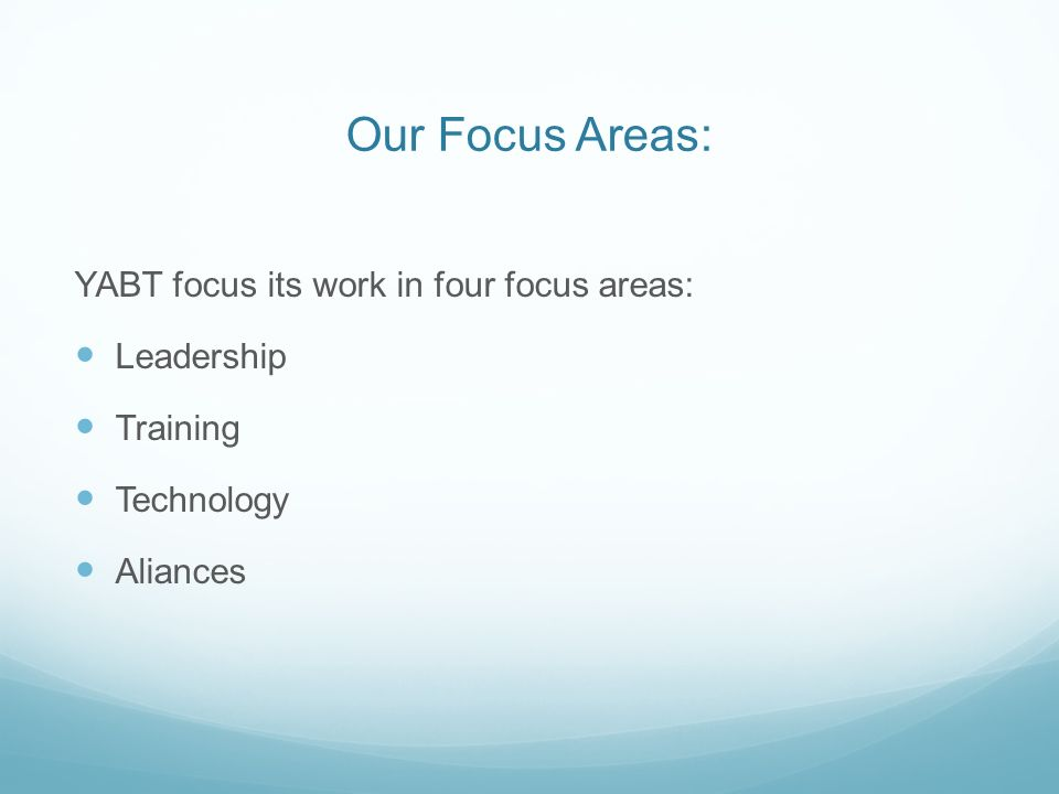 Our Focus Areas: YABT focus its work in four focus areas: Leadership Training Technology Aliances