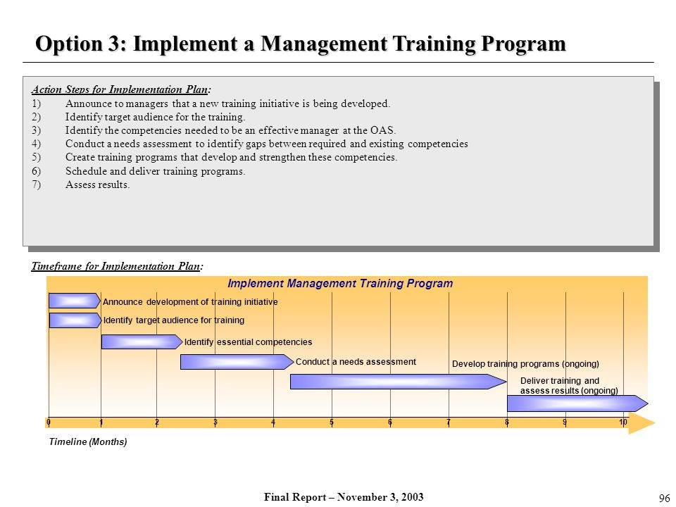 Final Report – November 3, 2003 Action Steps for Implementation Plan: 1)Announce to managers that a new training initiative is being developed. 2)Iden