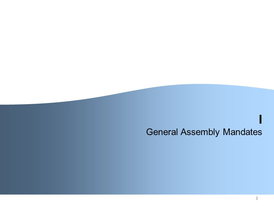 3 I General Assembly Mandates