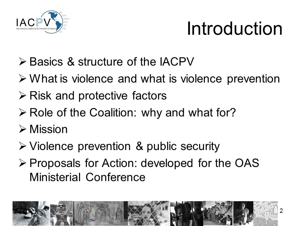2 Basics & structure of the IACPV What is violence and what is violence prevention Risk and protective factors Role of the Coalition: why and what for.