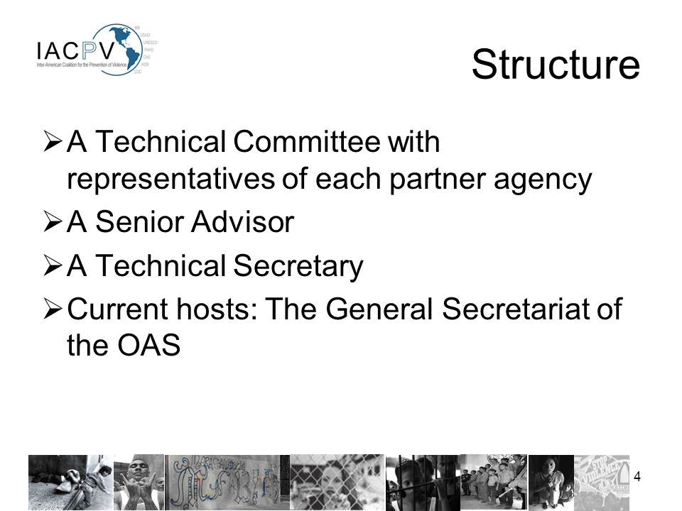4 A Technical Committee with representatives of each partner agency A Senior Advisor A Technical Secretary Current hosts: The General Secretariat of the OAS Structure