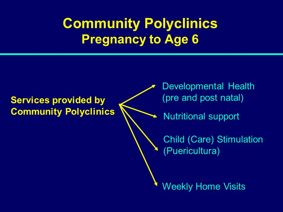 Community Polyclinics Pregnancy to Age 6 Developmental Health (pre and post natal) Weekly Home Visits Services provided by Community Polyclinics Nutri